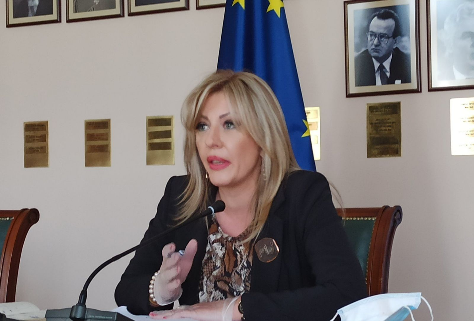 Ј. Јоксимовић: ЕУ ће повећати средства за опоравак Србије и ЗБ