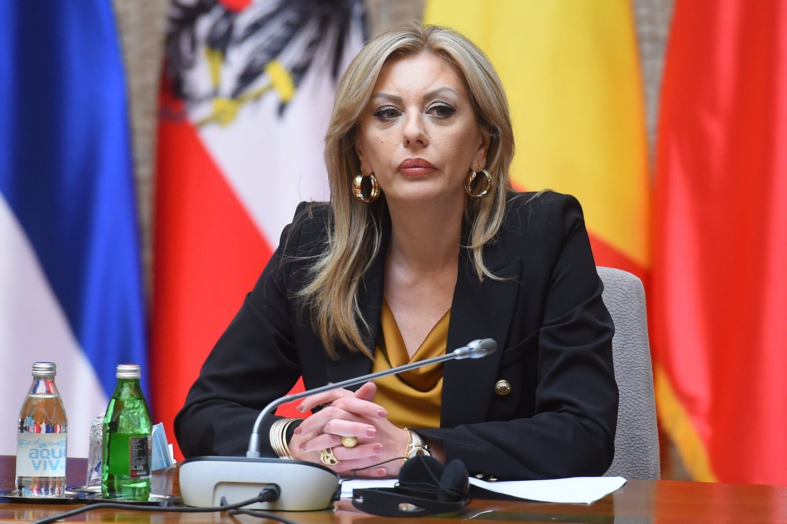 J. Joksimović: New Government to commit more strongly to reforms and European integration