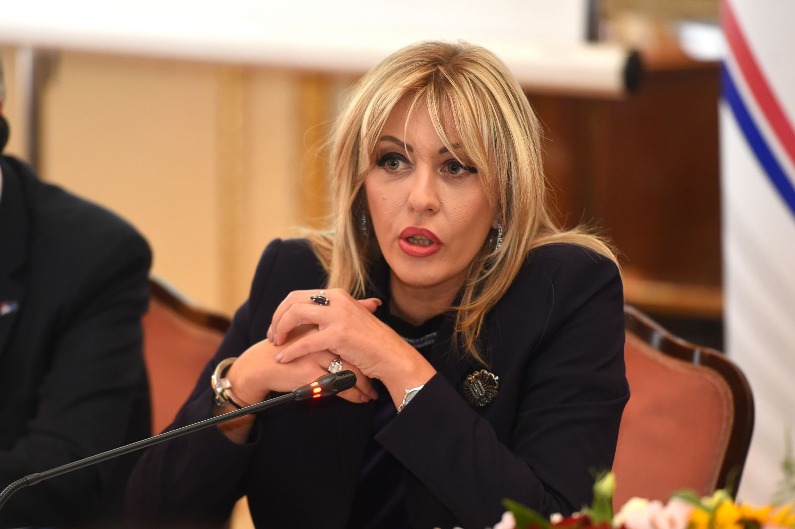 Joksimović to Minić: Modernise and innovate the work of the European Movement, don't you worry about MEI