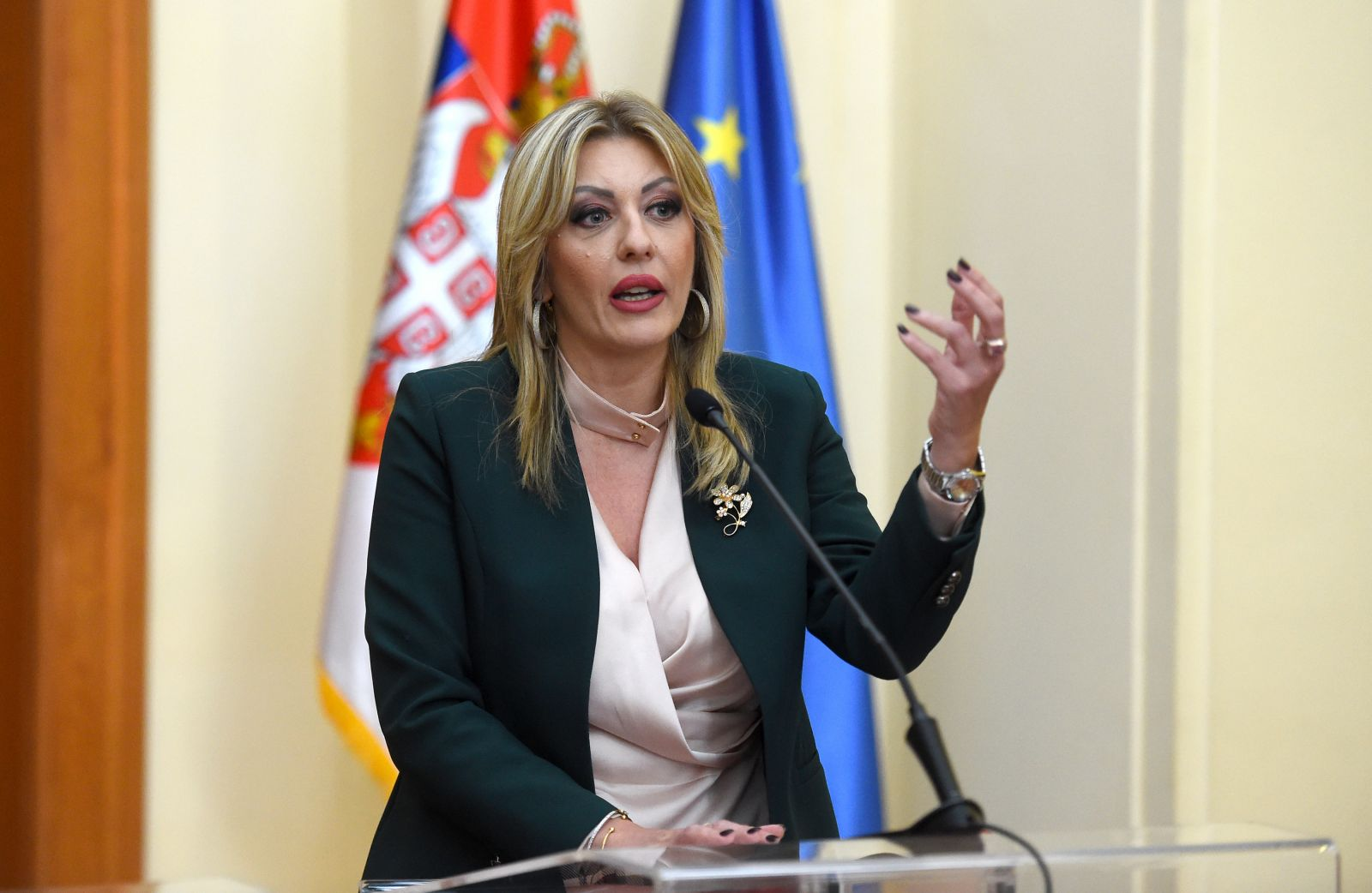 J. Joksimović: Important meeting between Vučić and Várhelyi