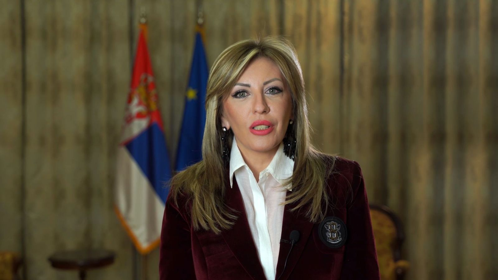 J. Joksimović: Resolution on reforms both positive and critical