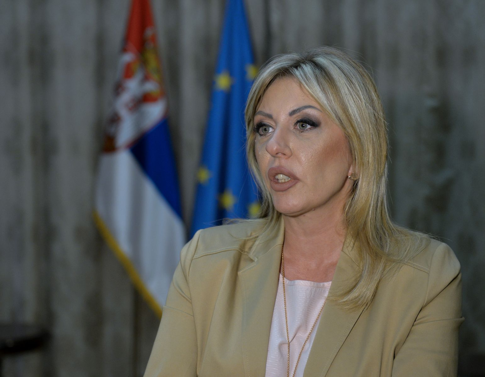 J. Joksimović: Increased interest of the U.S. in the European integration of our region