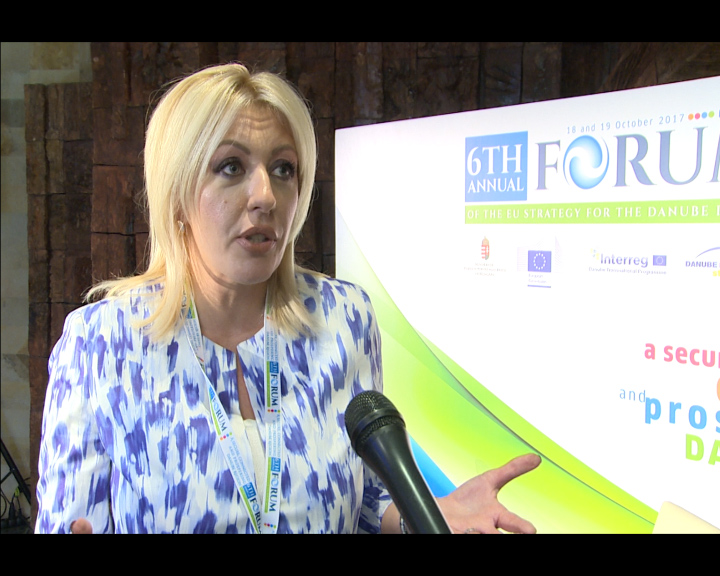 J. Joksimović: The Danube Strategy is a potential for regional development