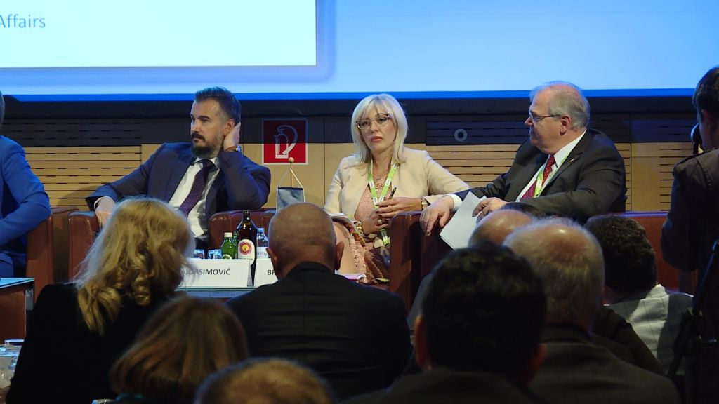 J. Joksimović: Economic development as conflicts prevention
