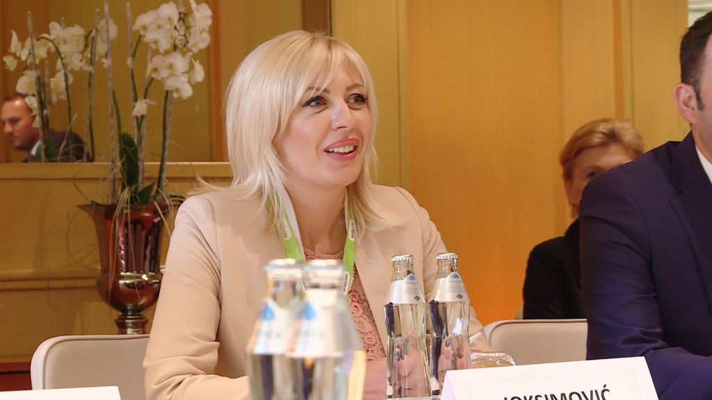 J. Joksimović: The European path of Serbia is the best option for youth