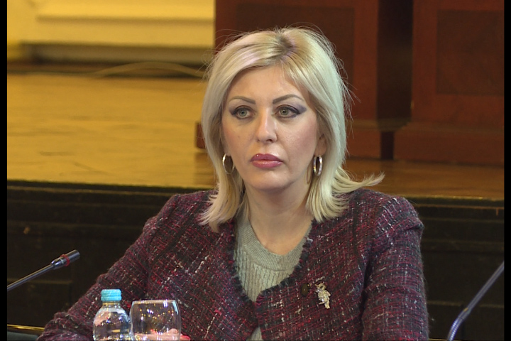 J. Joksimović: Serbia will help BiH on its European path